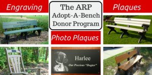 Donor Bench Program